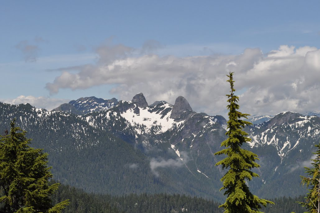 View of Lions from Hollyburn Mountain