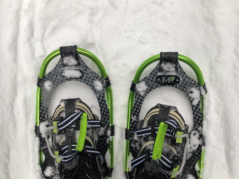 Snowshoes, Snacks and Endless Questions