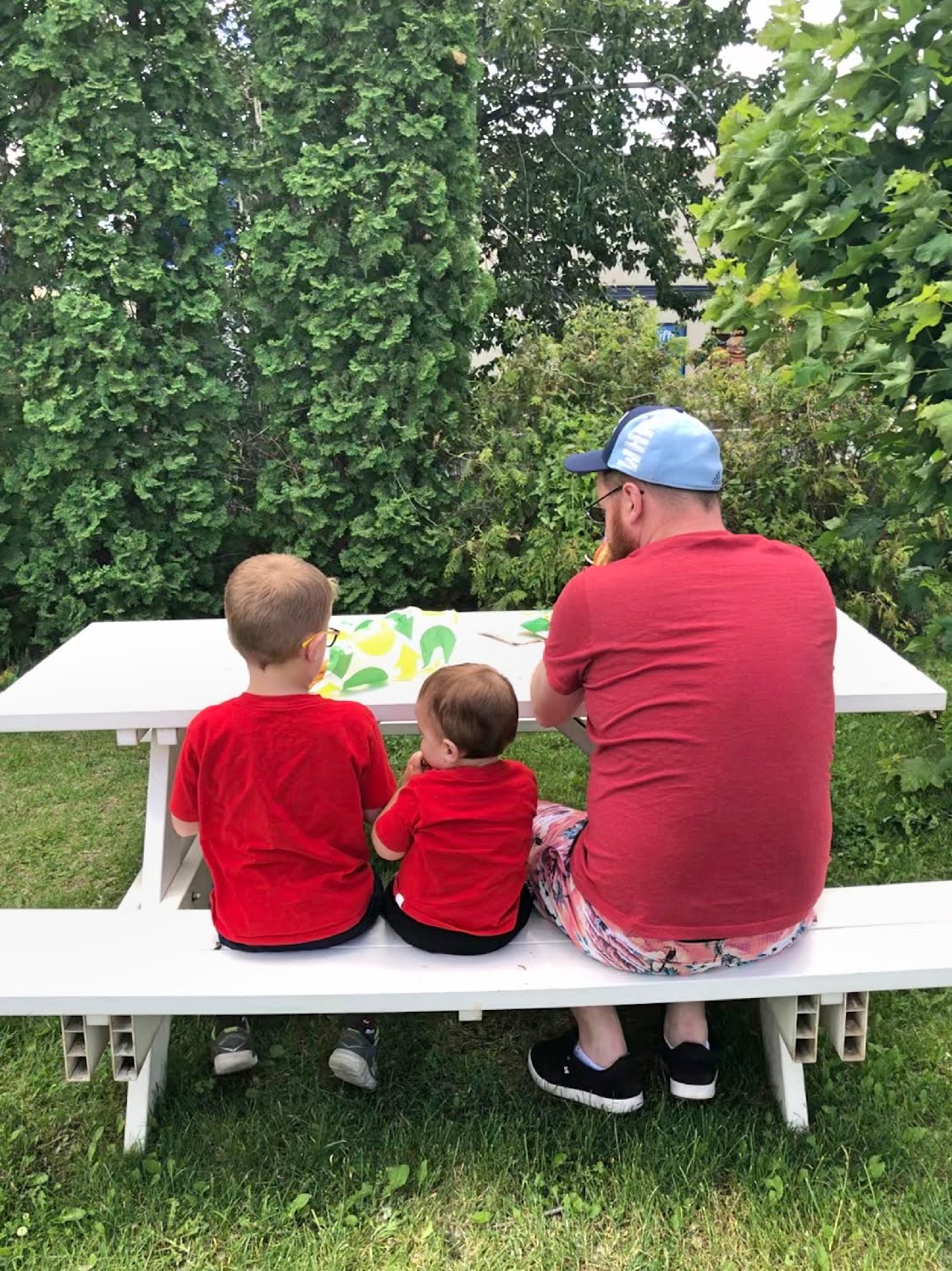Dad and Sons Picnic
