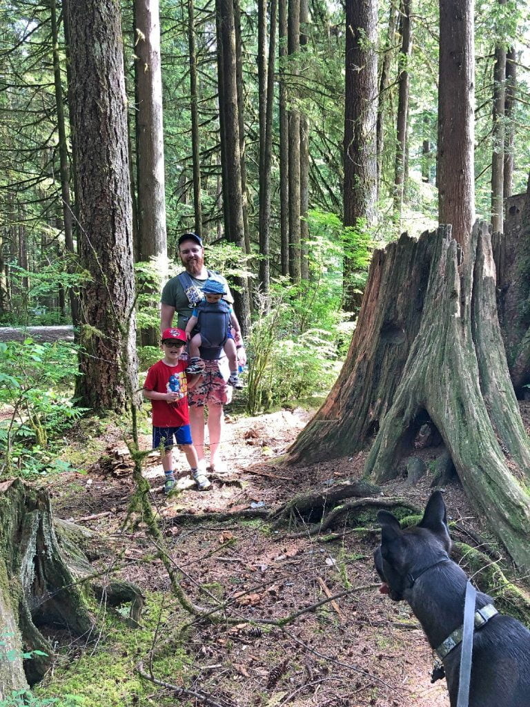 Father and Sons among the trees at Golden Ears Provincial Park