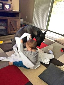 Toddler Playing with Roll of Garbage Bags