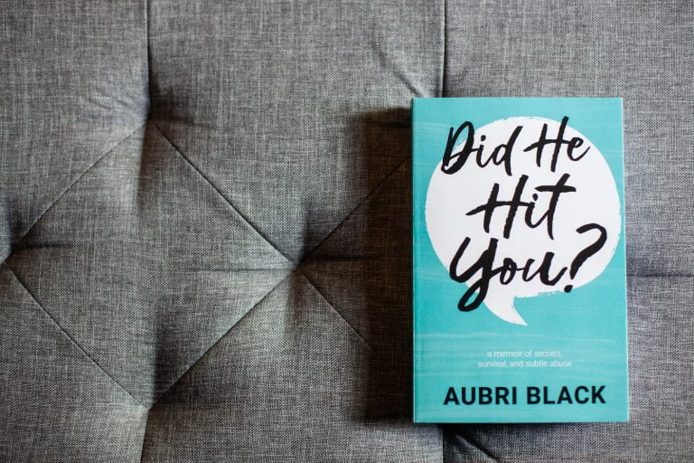 Book Cover - Did He Hit You? by Aubri Black