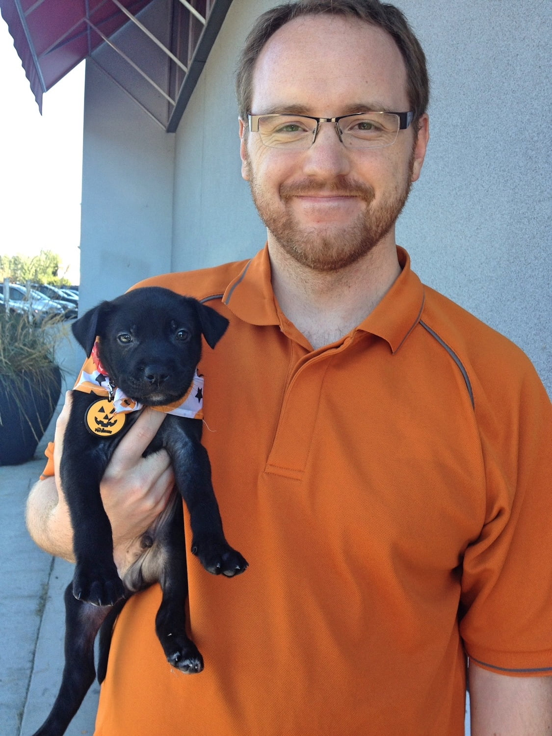 Man Holding Black Lab Cross Puppy