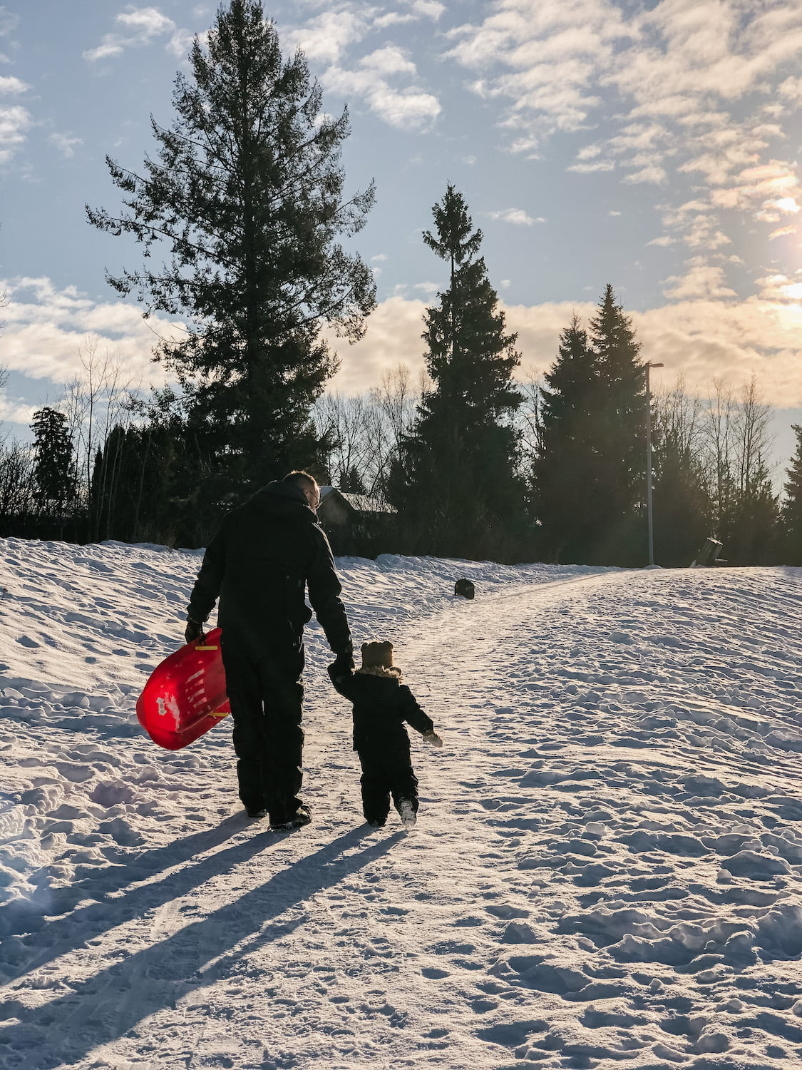 Dad and Toddler Son Holding Hands Walking in Snow