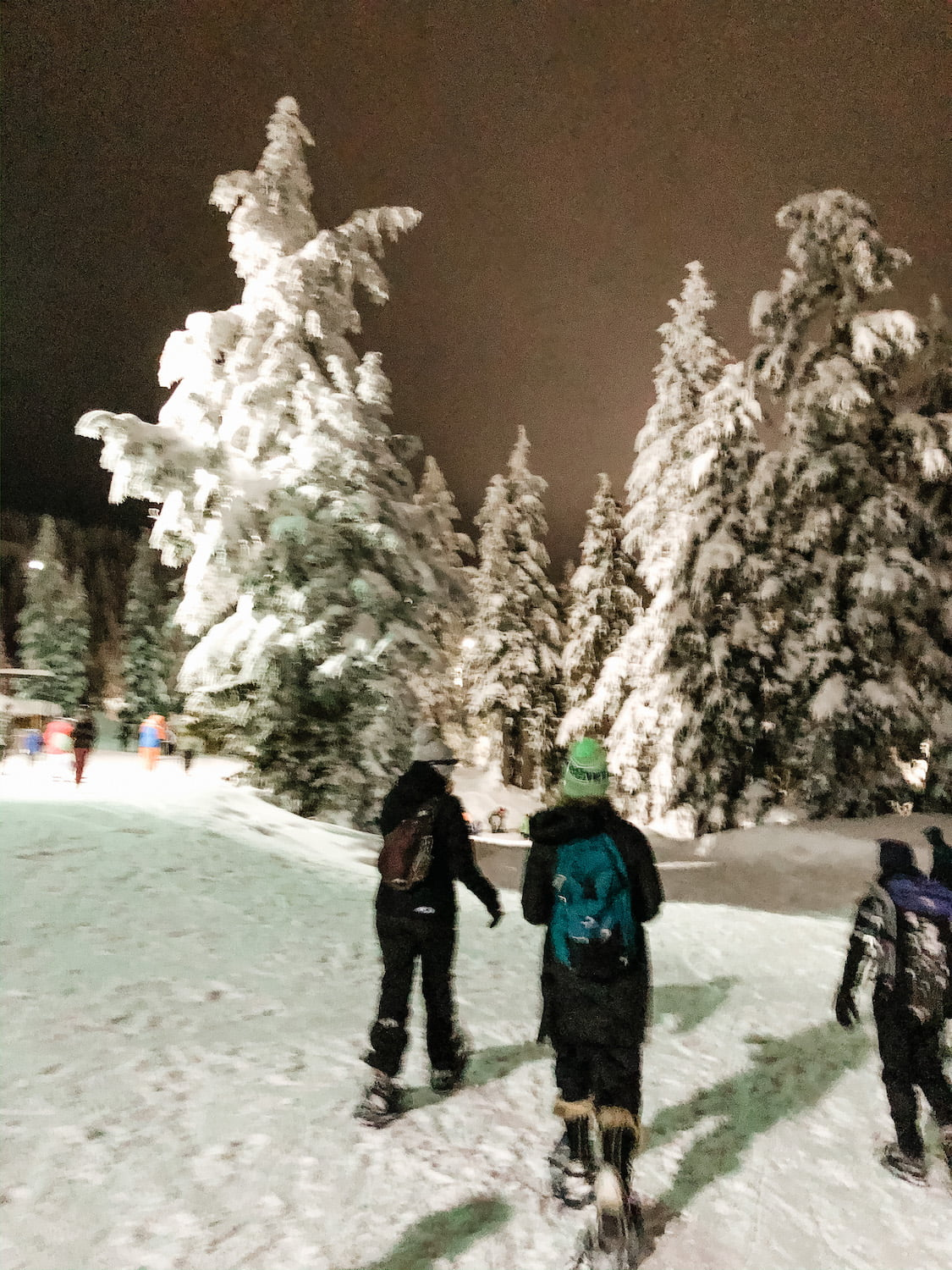 Snowshoeing with Moms Gone Wild - Mt Seymour