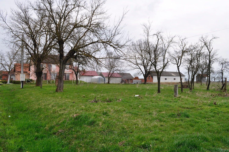 Croatia - Gasinci Field