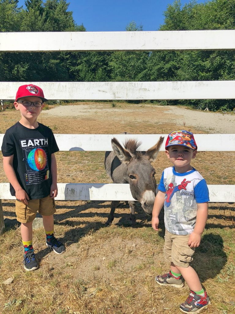 Kids Stand with Donkey Behind Fence