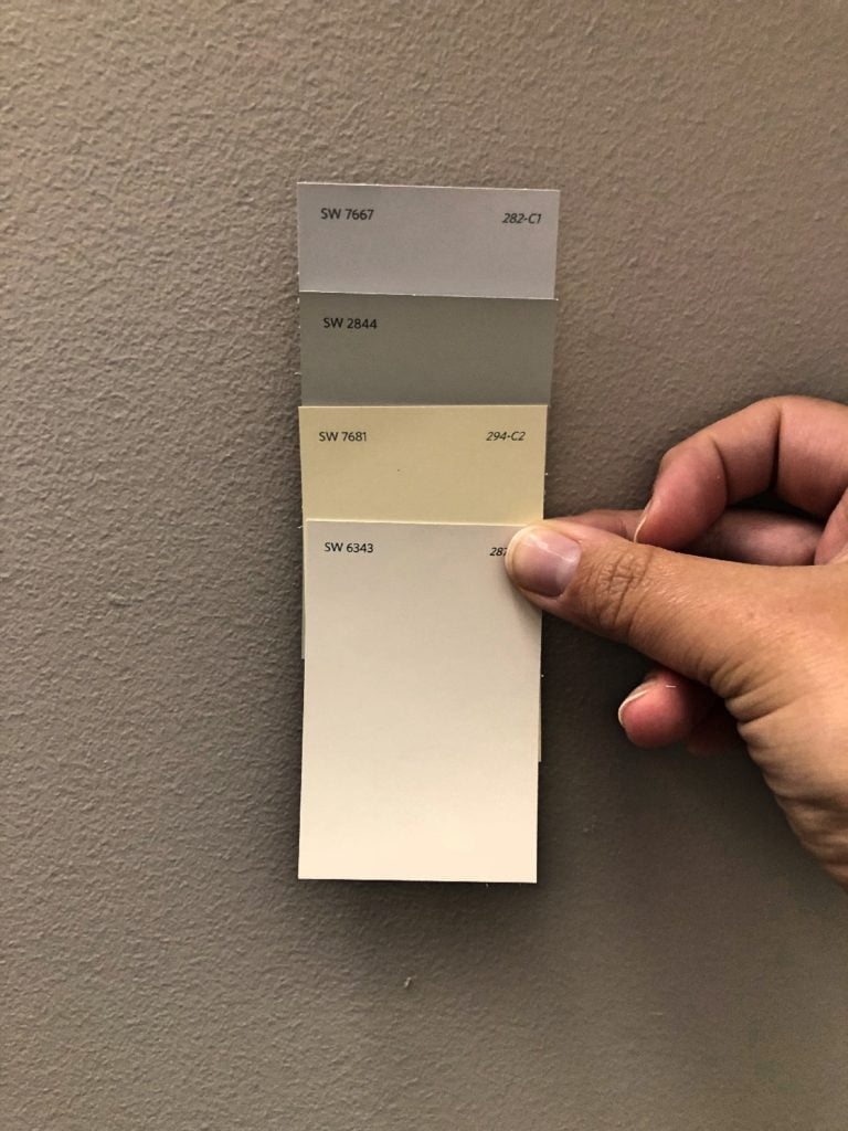 Paint Swatches in Neutral Tones Against Gray Wall