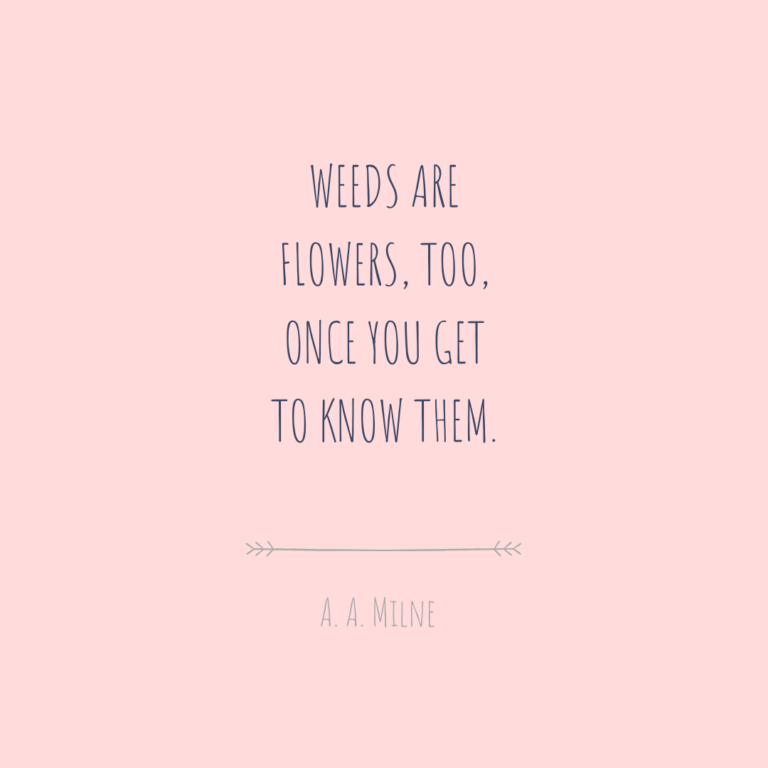Weeds Are Flowers Canva Quote