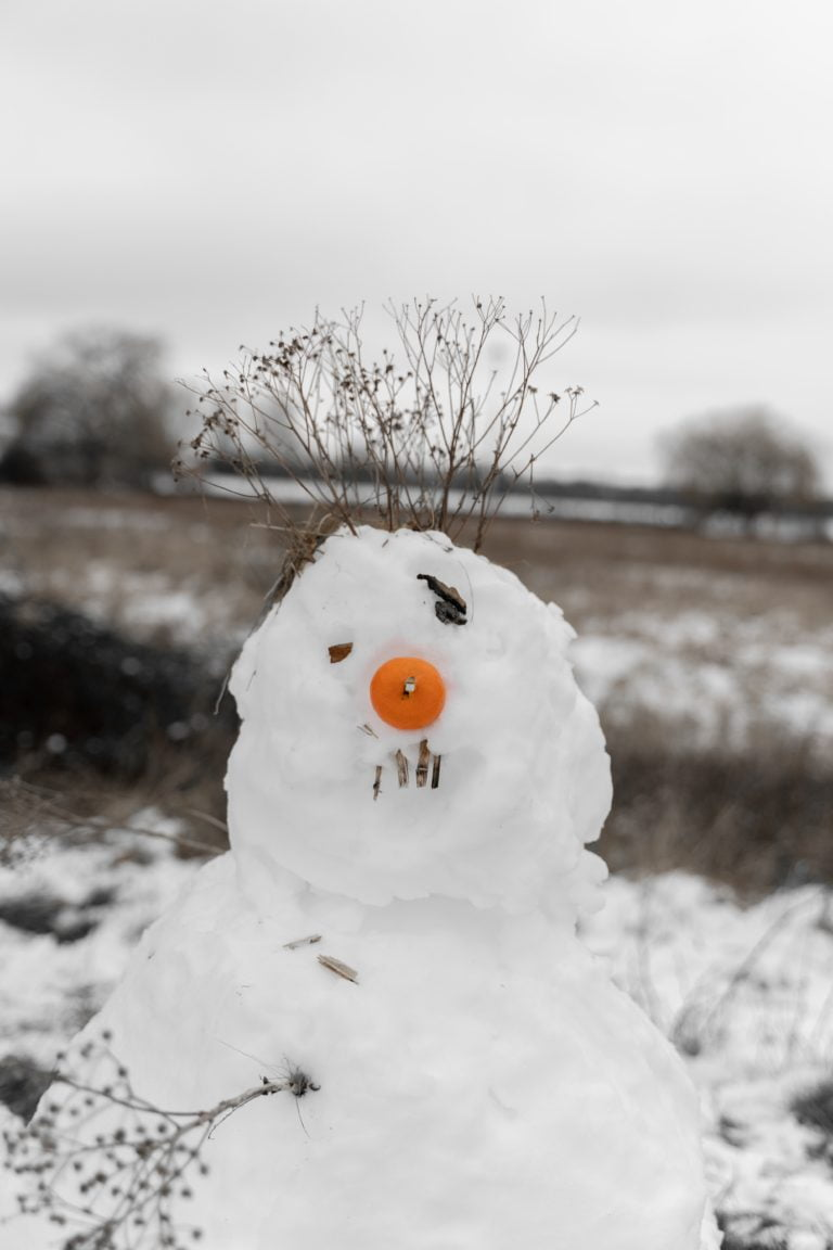 Snowman with Orange for Nose - Photo by Krzysztof Hepner on Unsplash
